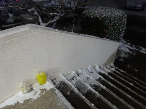 愛知大府寮の雪