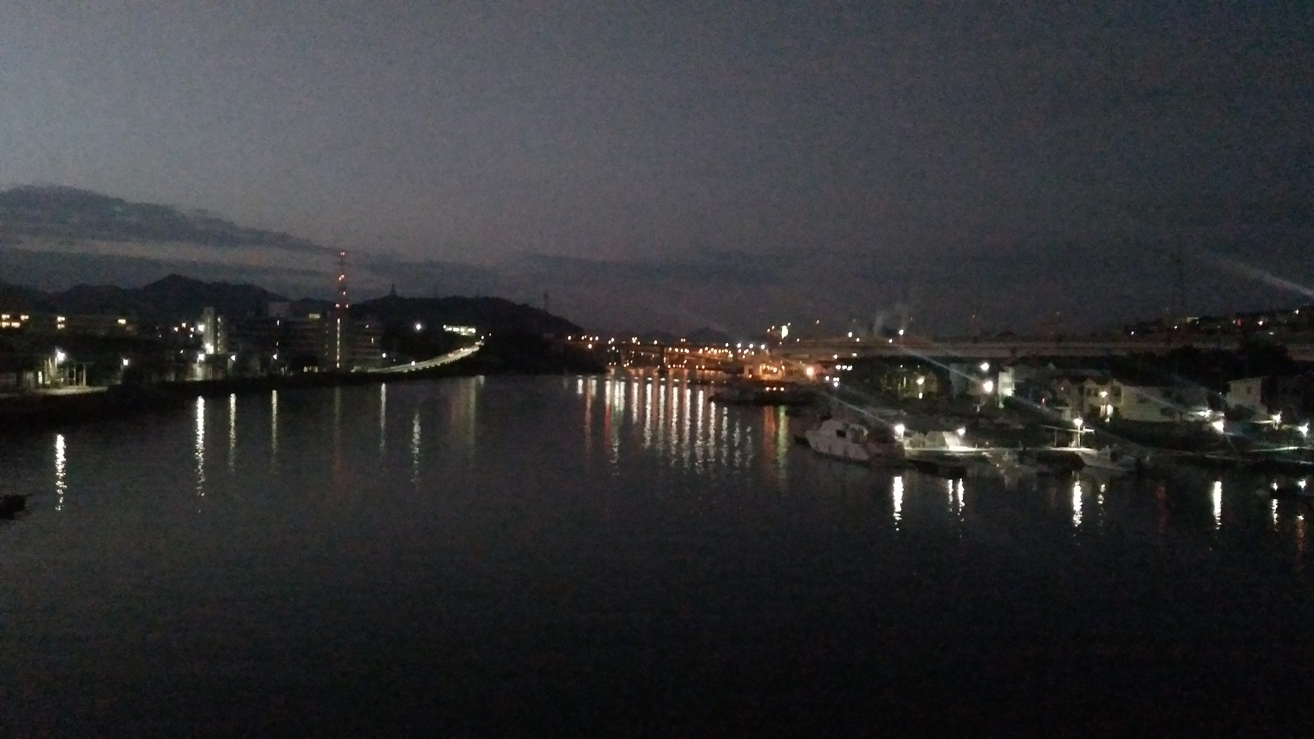 黄金山からの夜景