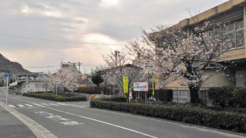 青崎小学校校門