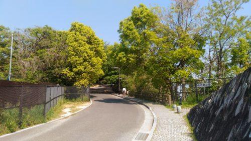 江波山公園道路その2