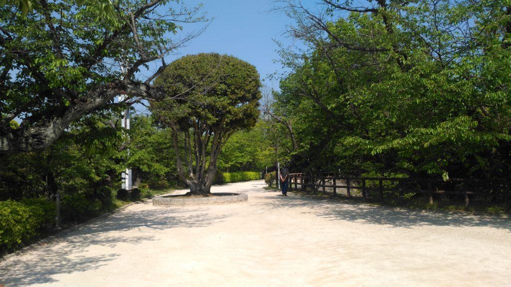江波山公園その2