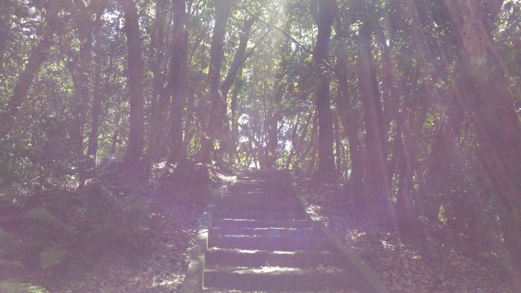 宇品灯台階段ショートカットその2