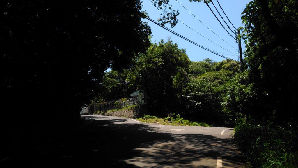 富士見台展望台との分岐