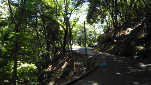 比治山の道路