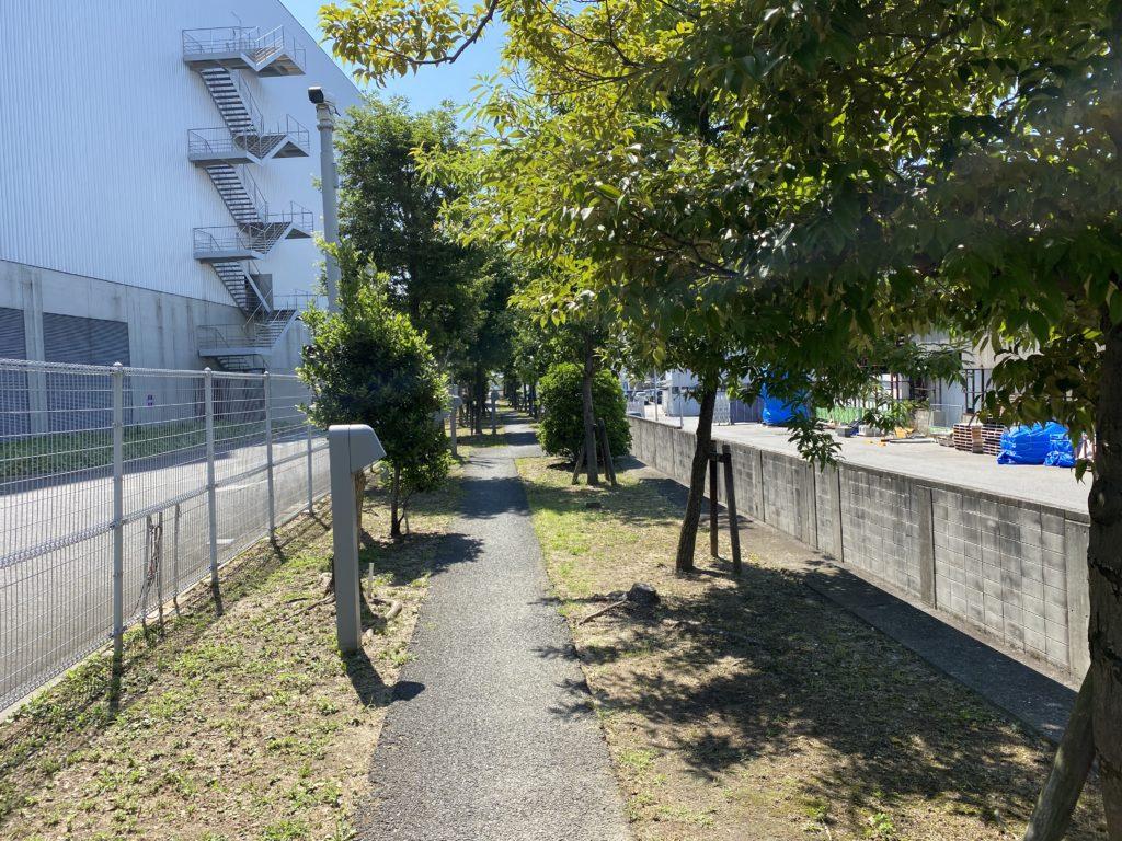 吉島釣り公園入口通路